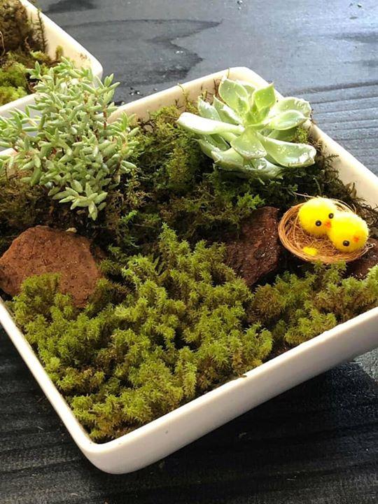 花蔵の三浦淳志さんをお招きして、